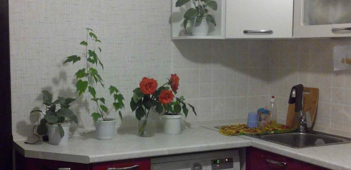 Кухня с тёмно-вишнёвыми дверками